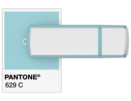 Pantone® Referencje Flash Drive