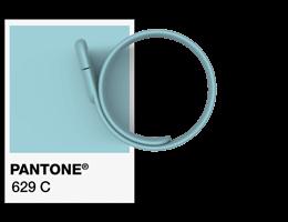 Pantone® Referencje Opaska USB na nadgarstek